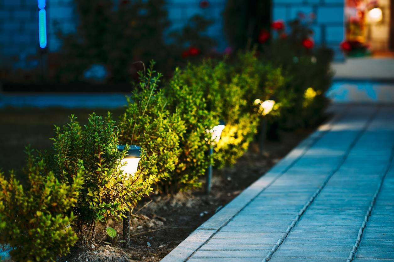 projecteur LED pour jardin