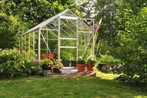 Serres de jardin : qu'y jardiner ?